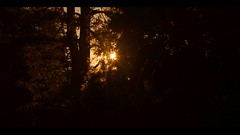 The Setting Sun (Josh Rokman) Tags: sun sunset video nikond7000 nikond7000video videoart hdvideo musicvideo creative creativevideo abstract abstractvideo summer solar nature outdoors bright brightcolors brightsun brightlight light