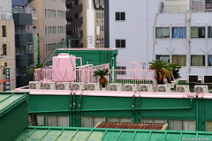 Barbie's rooftop (Red Cathedral has left Osaka) Tags: sonyalpha a77markii a77 mkii alpha sony larp car colorrun sonyslta77ii slt evf translucentmirrortechnology redcathedral urbanart streetphotography alittlebitofcommonsenseisagoodthing rooftop japan nippon nihon osaka kansai tempel scyscraper temple wolkenkrabber gratteciel japon fall autumn automn herfst leaves maple ginkgo colours red yellow geel rood coleur color wanderlust travel travelling november digitalnomad coloursoffall architecture shrine shinto buddist thelandofopposites asia voyage voyagedetective buddhist international japanairlines pink roze green groen