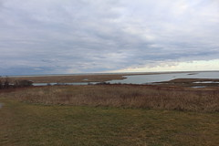 Fort Hill (robincagey) Tags: cape cod massachusetts new england winter january cold fort hill eastham nature trail scenery scenic marsh marshlands