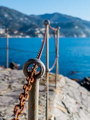 Chained thoughts (Gian Floridia) Tags: ligure liguria tigullio cage catene chainedthoughts chains contemplazione ferita gabbia mare pensieri pensieriincatenati riflessioni ruggine rust scar sea