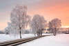 Sunrise at -17C (Sunny Herzinger) Tags: prien xf23mmf14 fujixpro2 landscape winter chiemgau trees road bavaria frozen chiemsee sunrise january snow prienamchiemsee bayern germany de