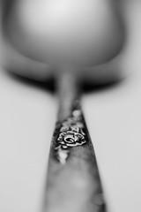 Forever A Rose (John Kocijanski) Tags: macro macromondays inspiredbyasong spoon rose silver tarnished bokeh canon60mmusmmacrolens blackandwhite