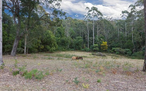 Lot 2, Lot 2 Grandfathers Gully Road, Malua Bay NSW 2536