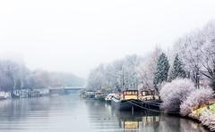 Winter in Utrecht (Bart Weerdenburg) Tags: utrecht lombok oog al muntkade winter mist cold white wit foggy netherlands nederland freezing outdoor