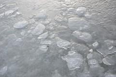 Seebad Mörbisch (anuwintschalek) Tags: nikond7000 d7k 18140vr austria burgenland neusiedlersee neusiedl järv jää lake see eis ice talv winter january 2017 uisutamas skating schischulaufen eislaufen mörbisch seebadmörbisch mörbischamsee
