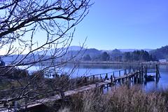 Embarcadero (BorjaR.) Tags: nikon d3300 embarcadero pier barca barco boat tree árbol sol sun naturaleza nature río river agua water sanjuandelaarena