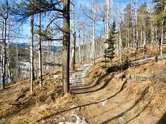 West Bragg Creek Winter Hike - Various trails - Where's the snow? (benlarhome) Tags: braggcreek westbraggcreek alberta canada hike hiking trek trekking trail path