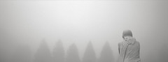 Jesus in the Fog, Portland (austin granger) Tags: jesus fog portland cemetery statuary religion correspondence shapes shrubs hedgerow winter film xpan death