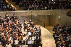 Das Konzert beginnt (p.schmal) Tags: panasonicgm1 hamburg elbphilharmonie konzertsaal treppenhaus hafen