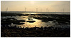 台中高美濕地    Gaomei Westland, Taichung (Alice 2017) Tags: iphone6 mobile wetland taiwan taichung 2015 sunset evening water beach light misty windenergy windturbine windfarm favorites50 aatvl01 1000views 1000v40f saariysqualitypictures aatvl02 2000views favorites100 aatvl03 3000views 3000v120f aatvl04