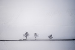 warten auf bessere Zeiten (Luftknipser) Tags: fotohttprenemuehlmeierde mailrebaergmxde luftaufnahme vonoben luftbild airpicture aerial outdoor deutschland deu germany bayern bavaria by oberpfalz landschaft landscape landsart winter schnee schatten