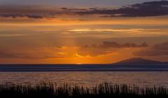 Sundown outside Reykavik (martin palmqvist (ALBUMS)) Tags: waterscapes sunset sundown creativecommon reeds thejourneytothecenteroftheearth iceland dawn