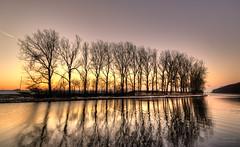 Occam's razor. (Alex-de-Haas) Tags: 1635mm d750 dutch hdr holland nederland nederlands netherlands nikkor nikkor1635mm nikon nikond750 noordholland noordhollandschkanaal thenetherlands westfriesland belichting bomen boom canal cloudless daglicht daylight handheld hemel highdynamicrange kanaal landscape landscapephotography landschap landschapsfotografie licht light lighting lucht onbewolkt skies sky sneeuw snow sundown sunset tree trees unclouded water winter zonsondergang