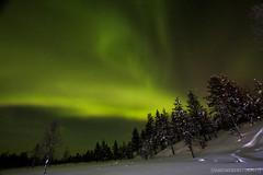 IMG_2913 (F@bione©) Tags: lapponia lapland marzo 2017 husky aurora boreale northenlight circolo polare artico rovagnemi finalndia finland