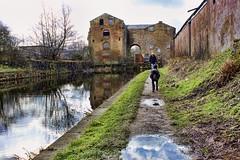 Abandoned warehouse on the canal (terrybrereton833) Tags: accrington abandenedwarehouse lancashire canon 100d rustic dog dogwalker