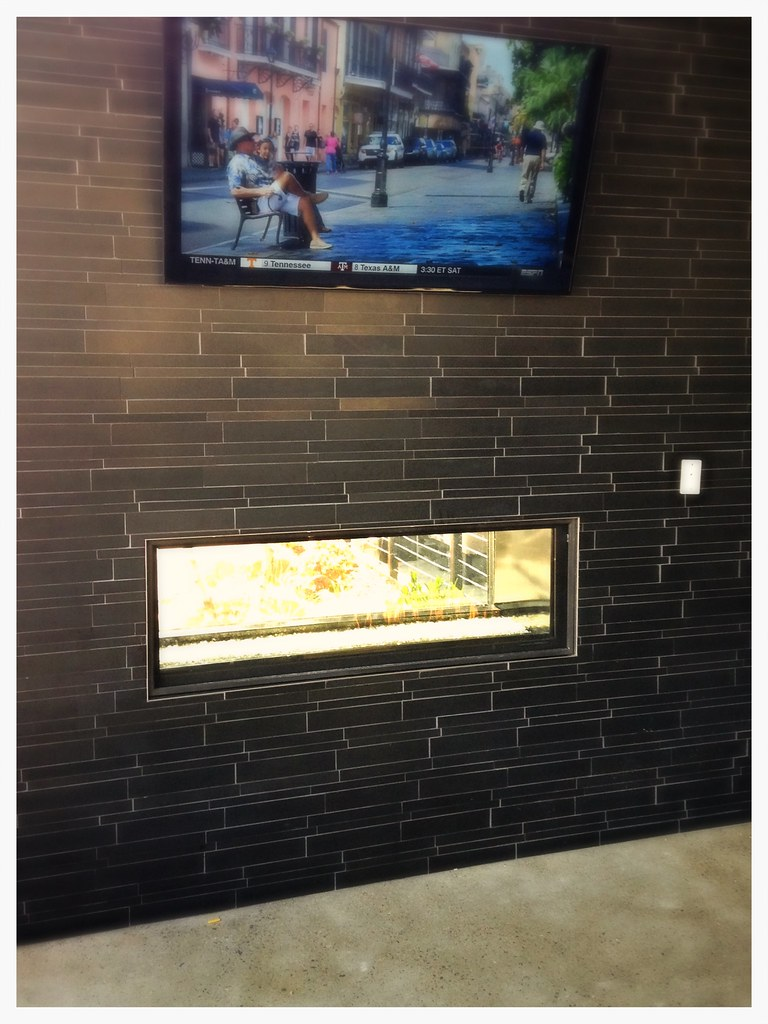 Valor See Thru Direct Vent Fireplace. Chattanooga, Tn.