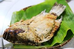 慕谷慕魚民宿晚餐 (阿明仔的鏡頭世界) Tags: 花蓮 銅門 秀林鄉 慕谷慕魚 慕谷慕魚民宿