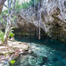 Crystal clear water of the Gran Cenote in Tulum, Mexico