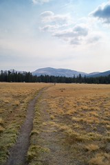 Hiking In Tuolumne Meadows (Yosemite Love) Tags: mountains hiking meadows bridges yosemite rivers pacificcresttrail pct yosemitenationalpark johnmuir tuolumnemeadows tiogapass lembertdome sierranevadamountains oldsigns tuolumneriver hikingtrails sonya58 yosemitelove925