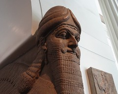 Assyrian lamassu head from Nimrud (ca. 883-859 B.C.) (heffelumpen9) Tags: sculpture britishmuseum lamassu assyria nimrud assyrianart neoassyrian kalhu ashurnasirpalii