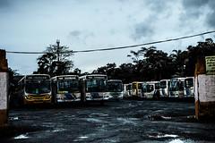 O transporte (Felipe Valim Fotografia) Tags: foto vale viagem ribeira valedoribeira ilhacomprida cavernadodiabo cajati caneneia