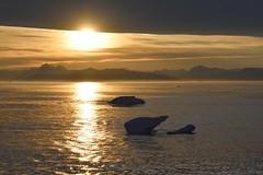 _DSC8490 (TC Yuen) Tags: glacier arctic greenland whales iceberg crusing floatingice polarregion greenlandeast