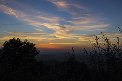 Sunset Bush (Cristiano Drago) Tags: blue trees light sunset red sky panorama orange cloud tree alberi clouds canon landscape lights bush tramonto nuvole nuvola view blu cielo vista luci albero rosso arancio luce siluette cespuglio 650d cristianodrago