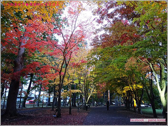 函館見晴公園 (4).JPG