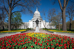Capitol Tulips (www.toddklassy.com) Tags: city travel flowers blue trees light usa color building statue horizontal stone wisconsin architecture bronze square gold democracy spring election midwest exterior unitedstates tulips state space politics capital bluesky motto visit front business capitol madison cover american dome government copyspace campaign wi legislature centered isolated forward senate clearsky assembly urbanlandscape statehouse madisonwisconsin stockphotography isthmus urbanscene colorimage wisconsinstatecapitol buildingexterior granitedome wisconsincapitol downtownmadison wisconsinstatecapital wisconsinphotographer madisonphotographer madisonarchitecture wisconsinarchitecture wisconsincities highestpointinmadison