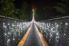 Canyon Lights (Spencer Finlay) Tags: christmas nightphotography bridge night festive lights canyon christmaslights capilanosuspensionbridge nikonphotographers canyonlights