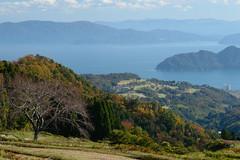 8Seya Highland (anglo10) Tags: field japan kyoto seashore