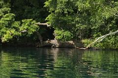 Kayak Adventure - Laguna Bacalar 2 (elhawk) Tags: mexico kayak yucatan kayaking bacalar lagunabacalar