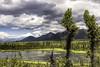 Wrangell-St. Elias National Park (Explored 12/10/16) (punahou77) Tags: alaska landscape nature nikond7100 nationalpark wrangellsteliasnationalpark lake clouds valley spruce roadtrip stevejordan sky punahou77 trees