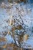Éclaté (Gerard Hermand) Tags: 1609043871 gerardhermand france bordeaux canon eos5dmarkii formatportrait abstrait abstract abstraction