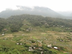 Small terraced village (program monkey) Tags: ha giang terraced agriculture village yesd vietnam cloud clouded obscured beautiful picturesque green forest