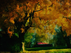 the red roof... (elle Q1) Tags: landscape with golden tree barn red roof shade green grass autumn fall watercolor filter topaz textured post processed digital photo art impressions soft focus leafs