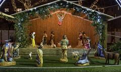 Christmas Fair in Budapest (Majorimi) Tags: fair market canon eos digital 70d budapest night light christmas xmas people street winter cold celebration buildings city lights decoration figurine sheep crist diorama