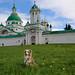 Laika in front of Spasso-Yakovlevsky Monastery | Rostov, Russia
