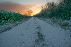 Cold start (Russell Discombe) Tags: snow sunrise cirencester gloucestershire sun white yellow nikon nikond3300 sigma18250 sigma landscape england cold winter