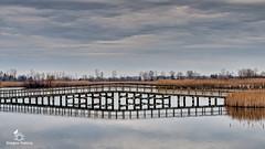 Crosswind Marsh 2-67 (dragos.tranca) Tags: crosswinds marsh michigan canon 70d sigma 30mm f14 art bridges hdr landscape
