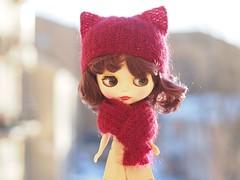 Blythe Cat Hat