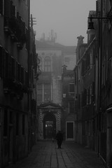Autunno urbano (s81c) Tags: green grigio grey nebbia fog bn bw venezia venice autumn fall autunno