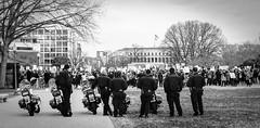 2017.01.29 Oppose Betsy DeVos Protest, Washington, DC USA 00248