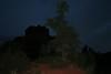 Dawn at Bell Rock (nikname) Tags: trees bellrock sedona arizona sunrise redrocks arizonausa arizonaredrocks bellrocksedonaarizona daw