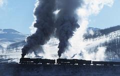 Thundering Upgrade, Jingpeng (dayvmac) Tags: chinesesteam jingpeng steamlocomotive steamer locomotive china