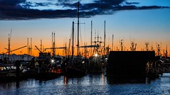 Harbour nights (Christie : Colour & Light Collection) Tags: fishingboats seiner trawler night evening sunset steveston twilight britishcolumbia canada bc nikon sky lighting nightlighting
