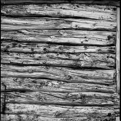 EK011 (Bjørn Egil Johansen) Tags: hasselblad500cm hasselbladcarlzeissplanar80mmf28 carlzeissplanar80mmf28 rolleirpx25 xtol wood laftet treverk straumhella troms tromsø