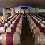 Weingut in den Winelands, Südafrika