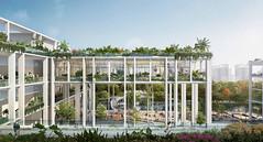 Oasis Terrace