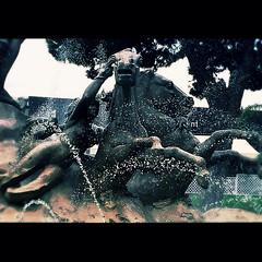 Il ratto di Proserpina (Cialtrone) Tags: italy statue italia sicily splash acqua fontana statua cavalli catania sicilia proserpina iphone scultura particolare schizzi rattodiproserpina